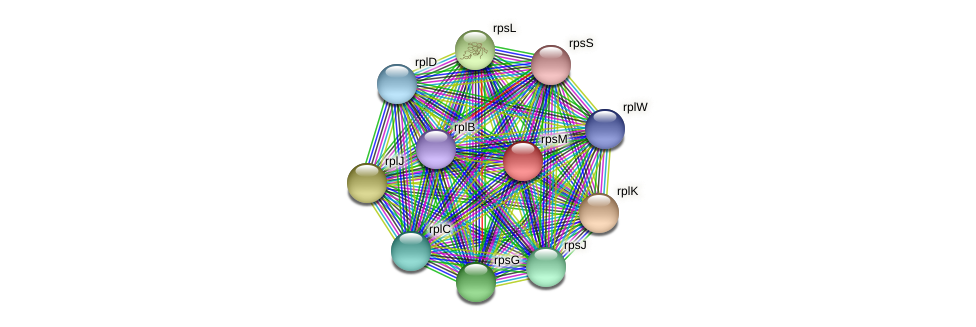 rpsM protein (Sideroxydans lithotrophicus) - STRING interaction network