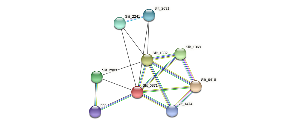 Slit_0871 protein (Sideroxydans lithotrophicus) - STRING interaction network