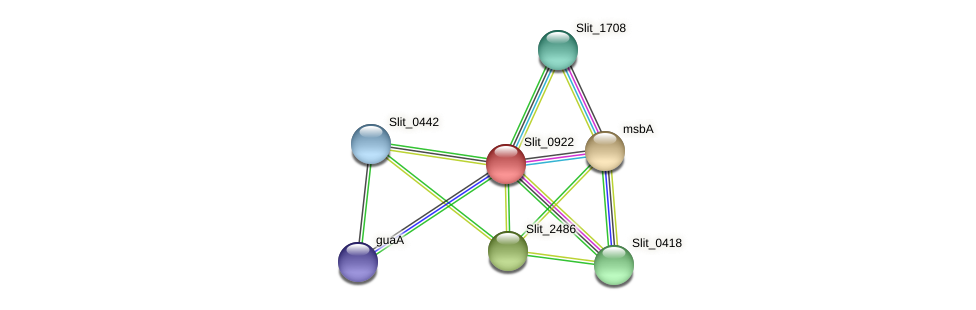 Slit_0922 protein (Sideroxydans lithotrophicus) - STRING interaction network