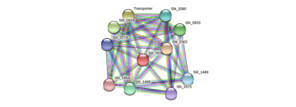 Slit_0935 protein (Sideroxydans lithotrophicus) - STRING interaction network
