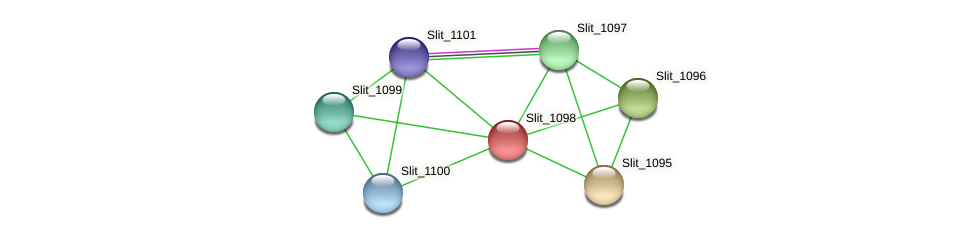 Slit_1098 protein (Sideroxydans lithotrophicus) - STRING interaction network