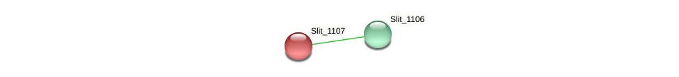 Slit_1107 protein (Sideroxydans lithotrophicus) - STRING interaction network