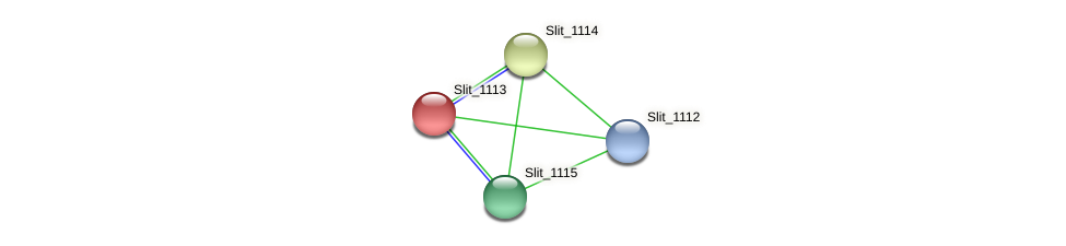 Slit_1113 protein (Sideroxydans lithotrophicus) - STRING interaction network