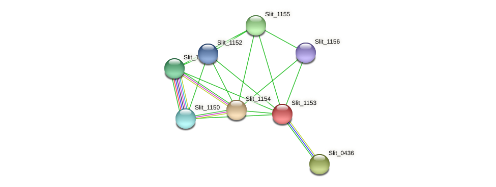 Slit_1153 protein (Sideroxydans lithotrophicus) - STRING interaction network