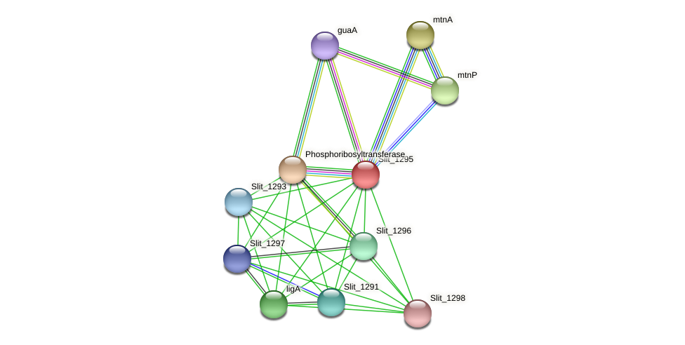 Slit_1295 protein (Sideroxydans lithotrophicus) - STRING interaction network