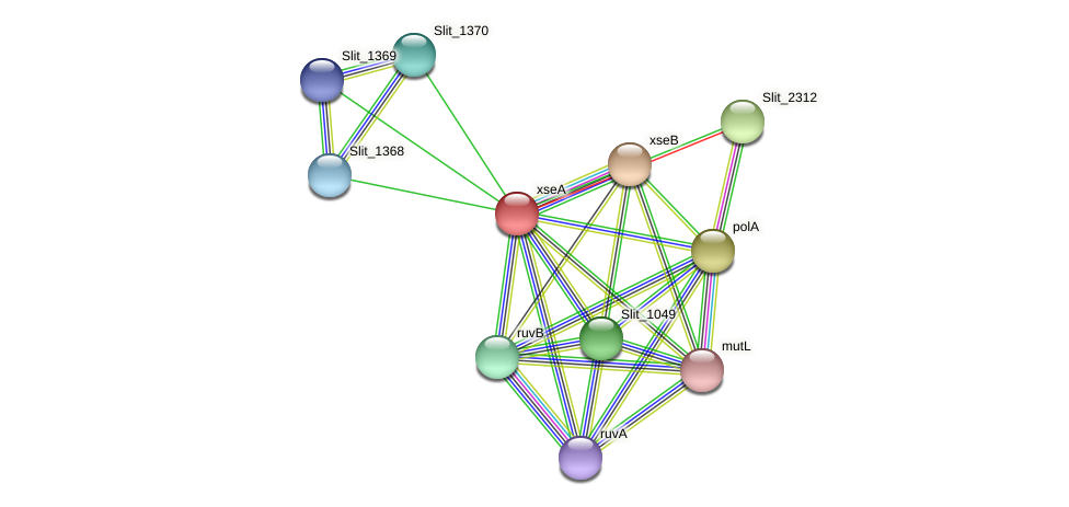 xseA protein (Sideroxydans lithotrophicus) - STRING interaction network