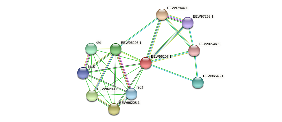 GCWU000321_00146 protein (Dialister invisus) - STRING interaction network
