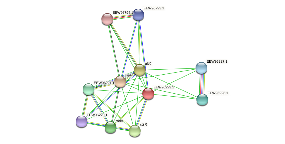 GCWU000321_00162 protein (Dialister invisus) - STRING interaction network