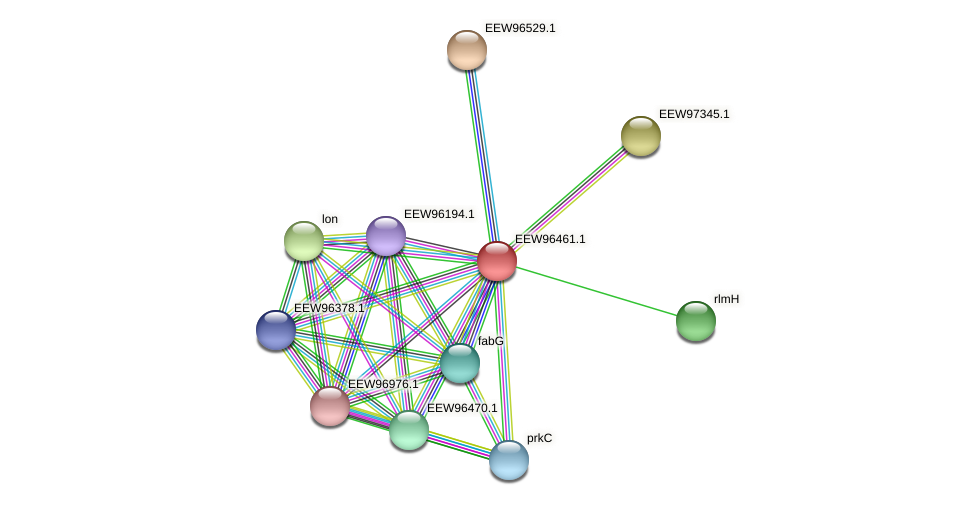 GCWU000321_00406 protein (Dialister invisus) - STRING interaction network