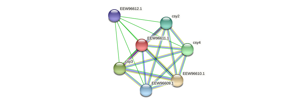 GCWU000321_00557 protein (Dialister invisus) - STRING interaction network