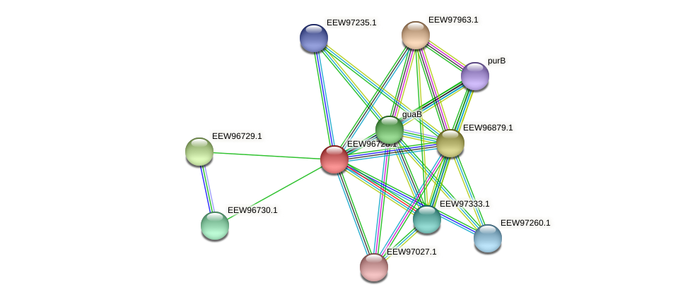 GCWU000321_00695 protein (Dialister invisus) - STRING interaction network
