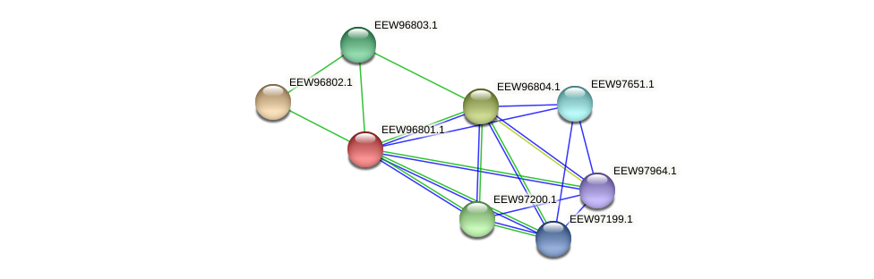 GCWU000321_00768 protein (Dialister invisus) - STRING interaction network