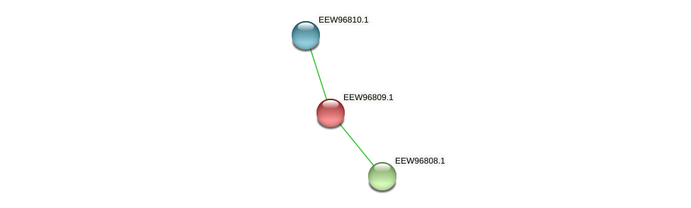 GCWU000321_00776 protein (Dialister invisus) - STRING interaction network
