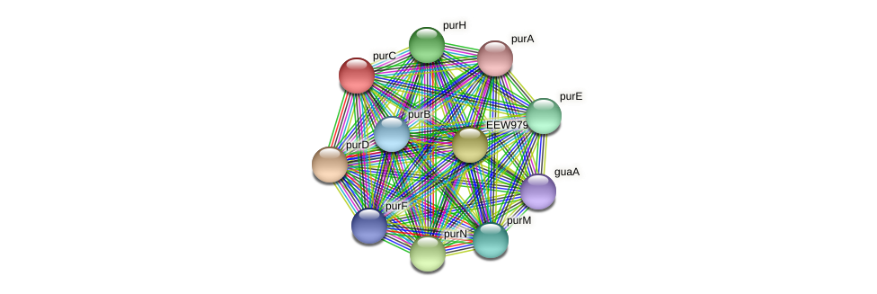 purC protein (Dialister invisus) - STRING interaction network