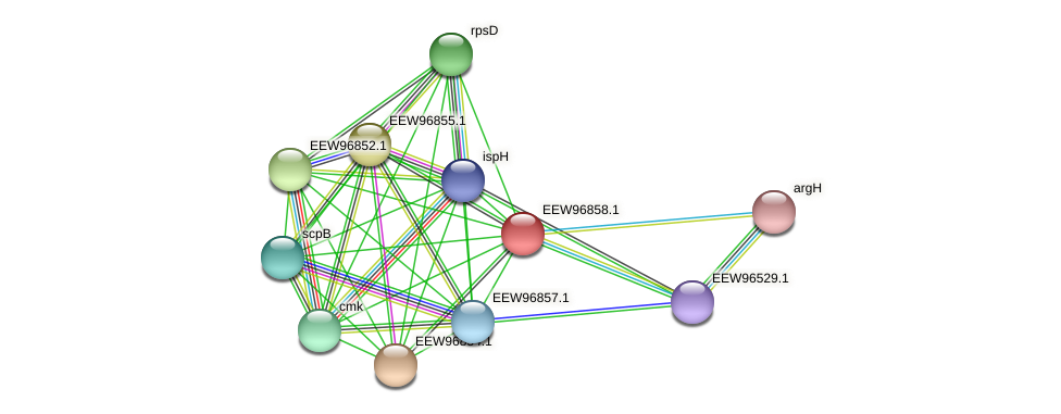 GCWU000321_00827 protein (Dialister invisus) - STRING interaction network