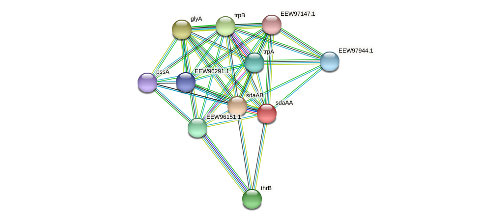 sdaAA protein (Dialister invisus) - STRING interaction network