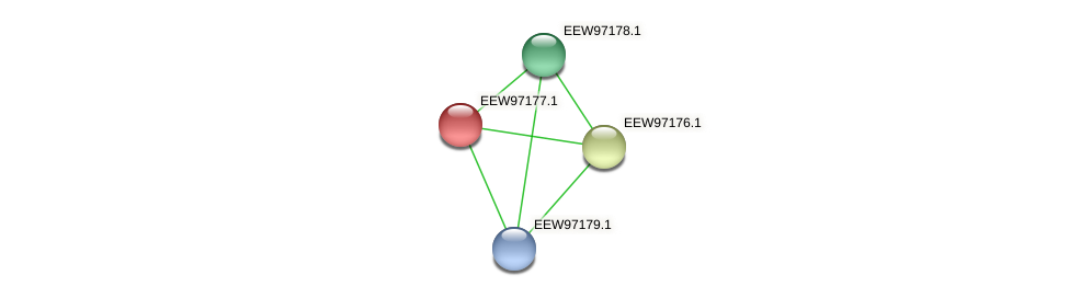 GCWU000321_01164 protein (Dialister invisus) - STRING interaction network
