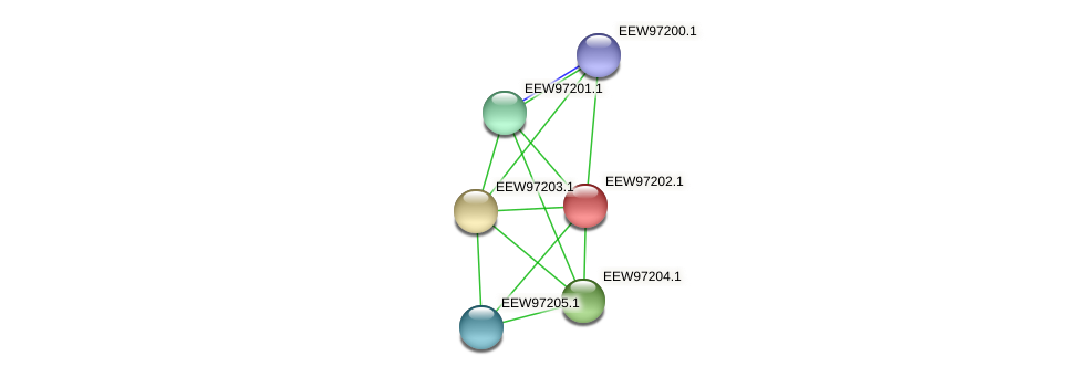 GCWU000321_01189 protein (Dialister invisus) - STRING interaction network
