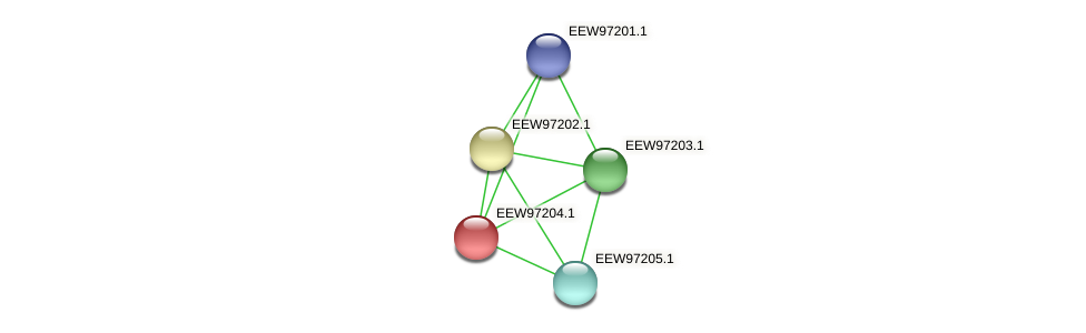 GCWU000321_01191 protein (Dialister invisus) - STRING interaction network