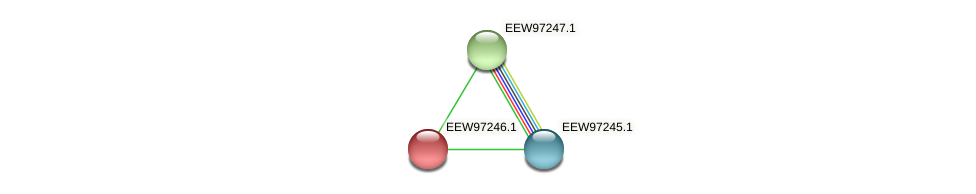 GCWU000321_01234 protein (Dialister invisus) - STRING interaction network
