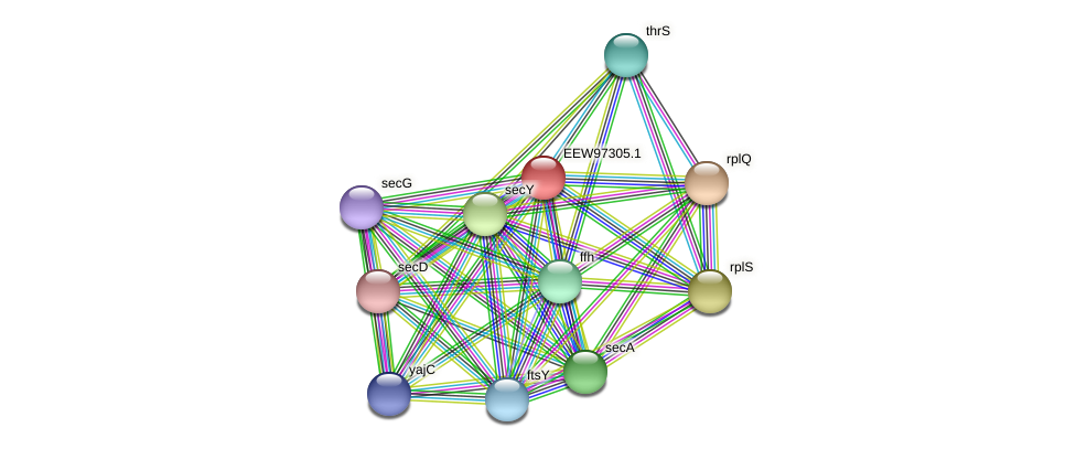 GCWU000321_01293 protein (Dialister invisus) - STRING interaction network
