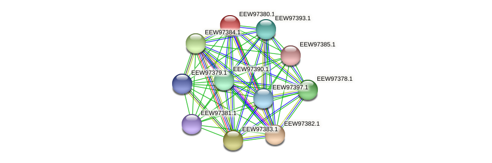 GCWU000321_01373 protein (Dialister invisus) - STRING interaction network