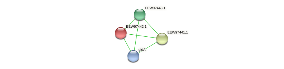 GCWU000321_01435 protein (Dialister invisus) - STRING interaction network
