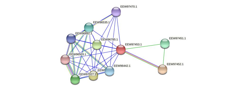GCWU000321_01447 protein (Dialister invisus) - STRING interaction network