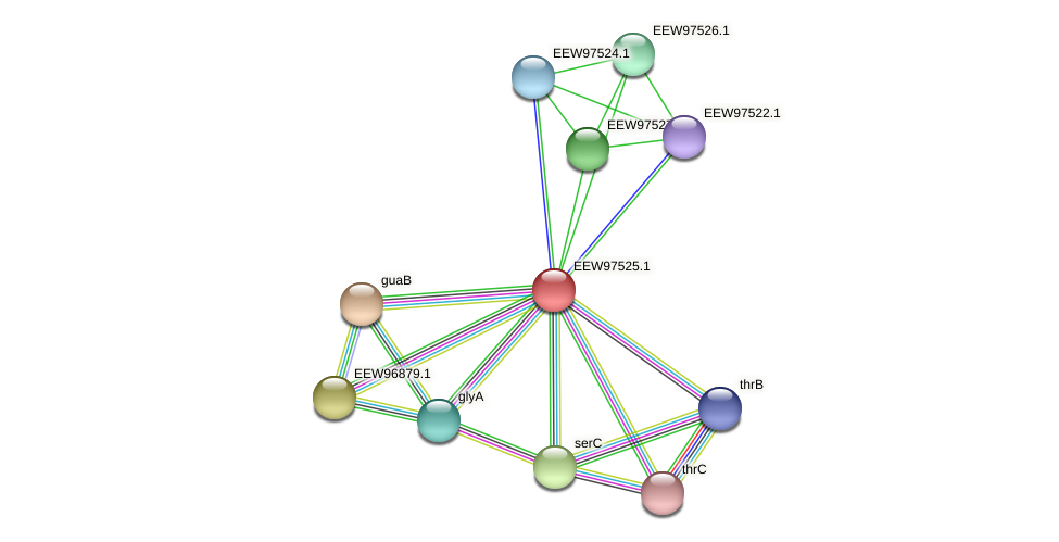 GCWU000321_01519 protein (Dialister invisus) - STRING interaction network