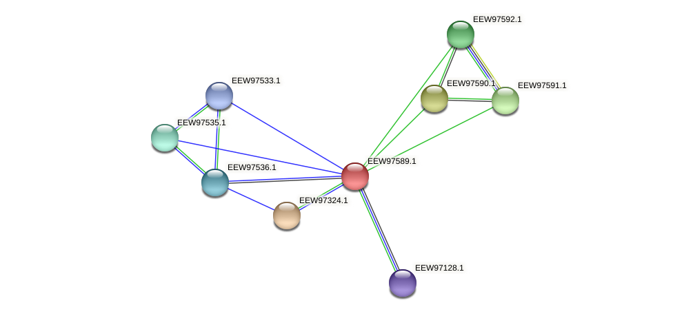 GCWU000321_01583 protein (Dialister invisus) - STRING interaction network