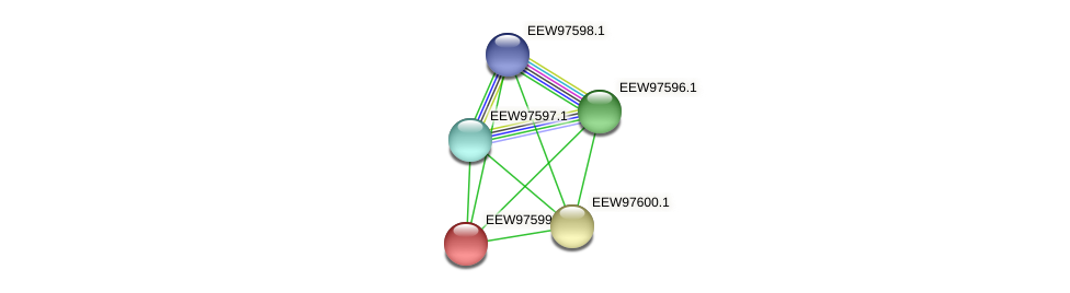 GCWU000321_01593 protein (Dialister invisus) - STRING interaction network