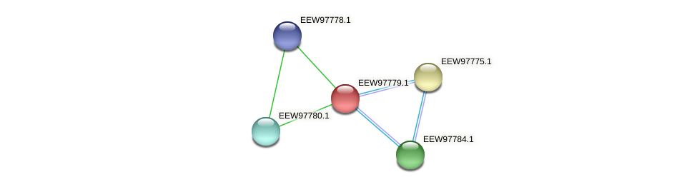 GCWU000321_01775 protein (Dialister invisus) - STRING interaction network