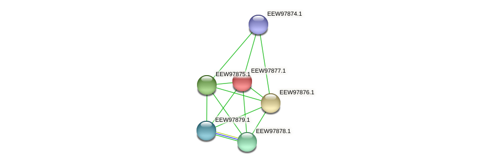 GCWU000321_01873 protein (Dialister invisus) - STRING interaction network