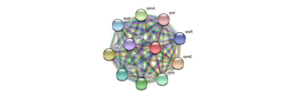 rplJ protein (Dialister invisus) - STRING interaction network