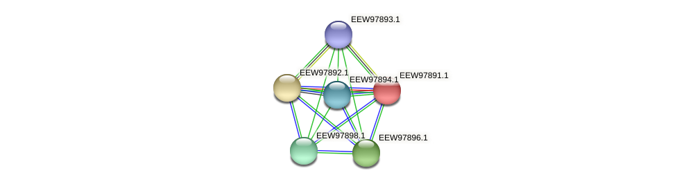GCWU000321_01887 protein (Dialister invisus) - STRING interaction network