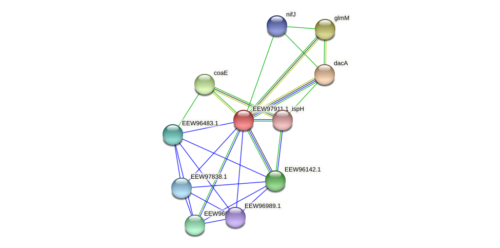 GCWU000321_01907 protein (Dialister invisus) - STRING interaction network