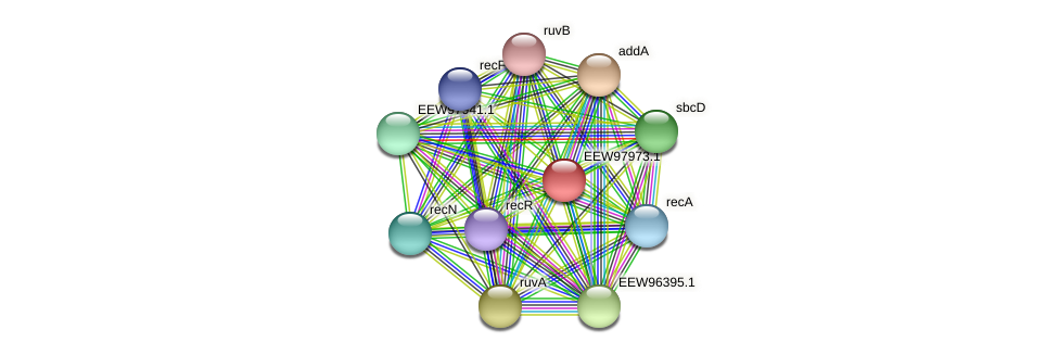 GCWU000321_01969 protein (Dialister invisus) - STRING interaction network