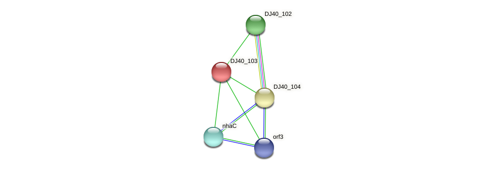 DJ40_103 protein (Yersinia pseudotuberculosis) - STRING interaction network