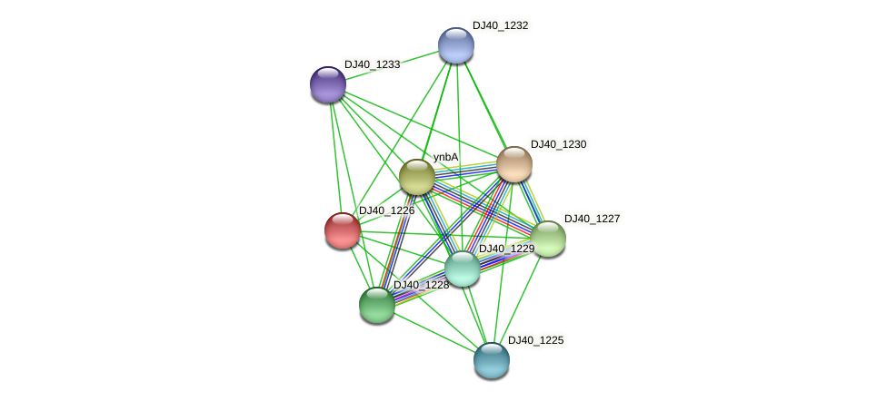 DJ40_1226 protein (Yersinia pseudotuberculosis) - STRING interaction network