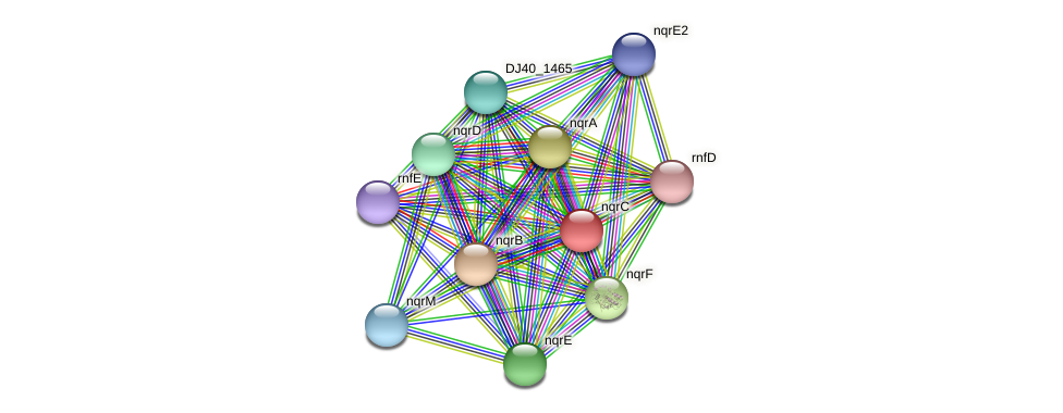 nqrC protein (Yersinia pseudotuberculosis) - STRING interaction network