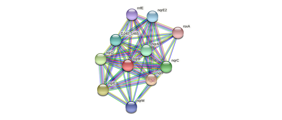 nqrB protein (Yersinia pseudotuberculosis) - STRING interaction network