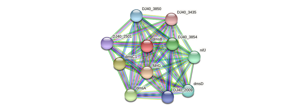 dmsB_2 protein (Yersinia pseudotuberculosis) - STRING interaction network