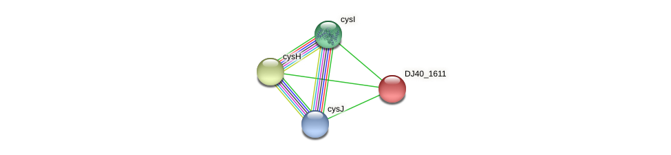 DJ40_1611 protein (Yersinia pseudotuberculosis) - STRING interaction network