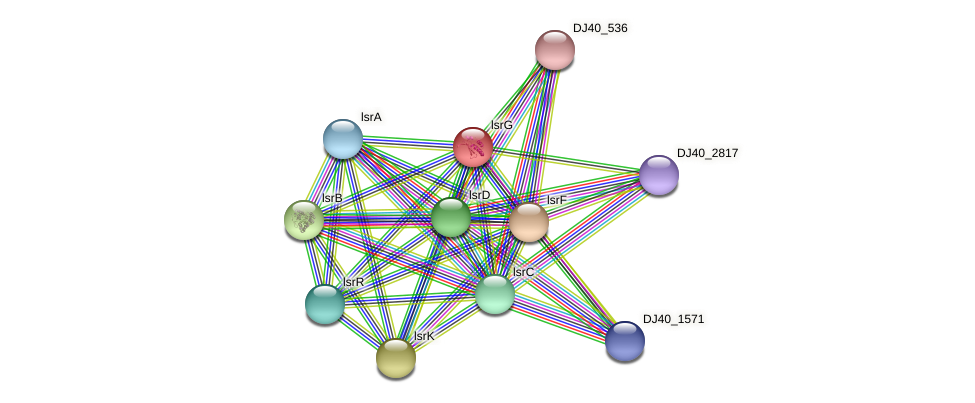 lsrG protein (Yersinia pseudotuberculosis) - STRING interaction network