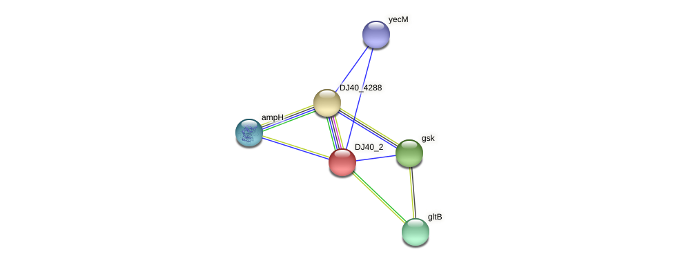 DJ40_2 protein (Yersinia pseudotuberculosis) - STRING interaction network