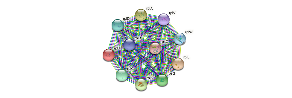 rplJ protein (Yersinia pseudotuberculosis) - STRING interaction network