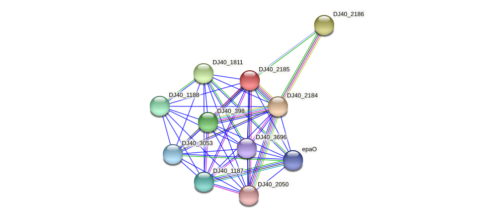 DJ40_2185 protein (Yersinia pseudotuberculosis) - STRING interaction network