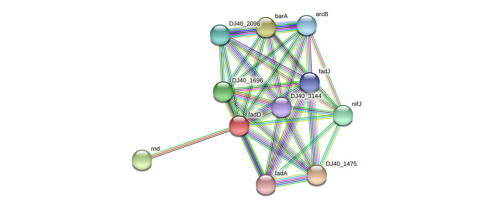 fadD protein (Yersinia pseudotuberculosis) - STRING interaction network
