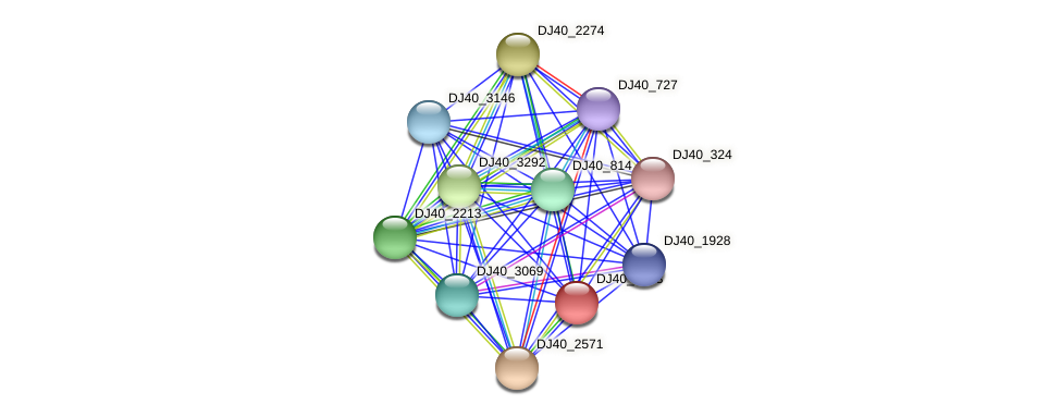 DJ40_2573 protein (Yersinia pseudotuberculosis) - STRING interaction network