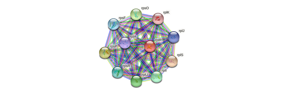 rplR protein (Yersinia pseudotuberculosis) - STRING interaction network